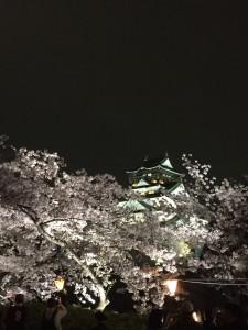 2015桜 夜の大阪城
